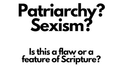 Patriarchy?  Sexism?  Is it a flaw or a feature?